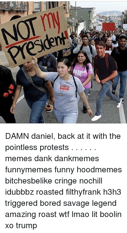 Protesters Meme: NOT my  PresdenH  k  E DAMN daniel, back at it with the pointless protests . . . . . . memes dank dankmemes funnymemes funny hoodmemes bitchesbelike cringe nochill idubbbz roasted filthyfrank h3h3 triggered bored savage legend amazing roast wtf lmao lit boolin xo trump