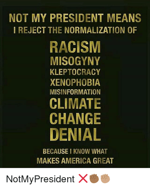Not My President: NOT MY PRESIDENT MEANS  I REJECT THE NORMALIZATION OF  RACISM  MISOGYNY  KLEPTOCRACY  XENOPHOBIA  MISINFORMATION  CLIMATE  CHANGE  DENIAL  BECAUSE I KNOW WHAT  MAKES AMERICA GREAT NotMyPresident ❌✊🏾✊🏽