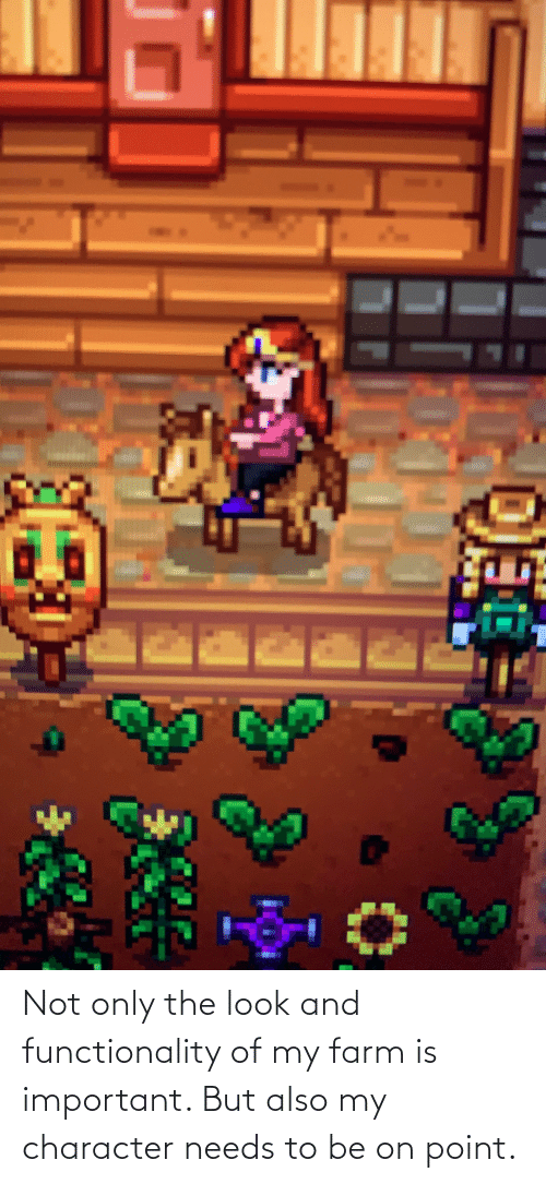 functionality: Not only the look and functionality of my farm is important. But also my character needs to be on point.
