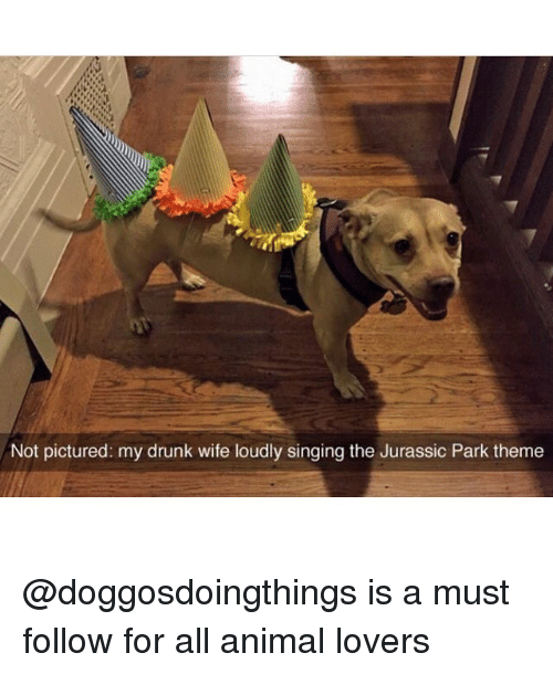 Drunk, Jurassic Park, and Memes: Not pictured: my drunk wife loudly singing the Jurassic Park theme @doggosdoingthings is a must follow for all animal lovers