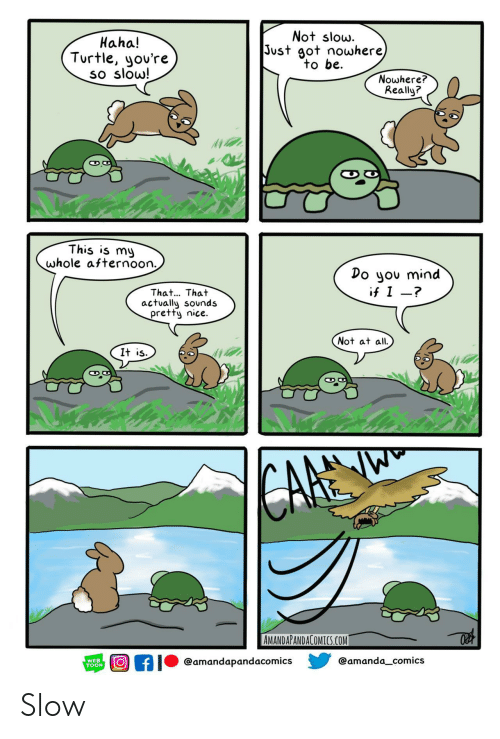 Not At All: Not slow.  Just got nowhere)  to be  Haha!  Turtle, you're  so slow!  Nowhere?  Really?  This is my  whole afternoon.  Do you mind  if I -?  That... That  actually sounds  pretty nice.  Not at all  It is  CARE  AMANDAPANDACOMICS.COM  @amanda_comics  @amandapandacomics  WEB  TOON Slow
