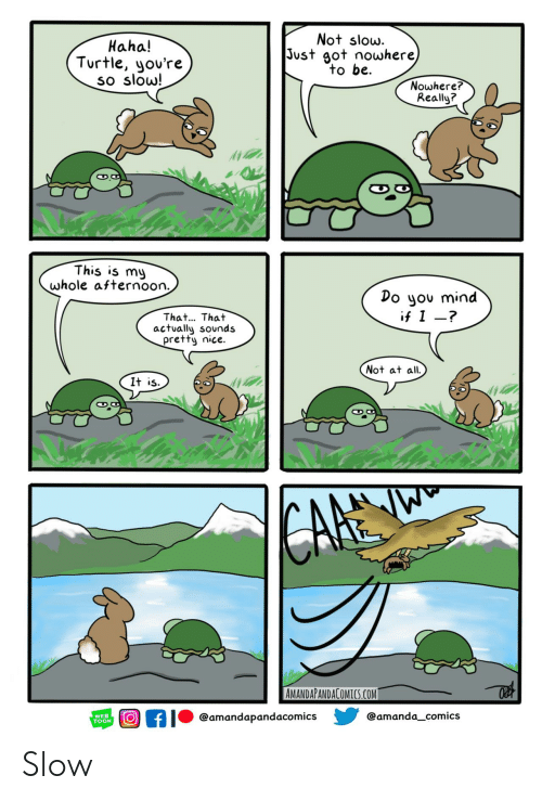 cafe: Not slow.  Just got nowhere)  to be  Haha!  Turtle, you're  so slow!  Nowhere?  Really?  This is my  whole afternoon.  Do you mind  if I -?  That... That  actually sounds  pretty nice.  Not at all  It is  CAFE  AMANDAPANDACOMICS.COM  @amanda_comics  @amandapandacomics  WEB  TOON Slow