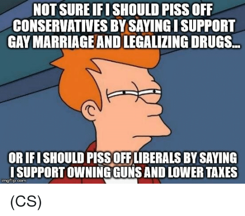 Drugs, Guns, and Memes: NOT SURE IFI SHOULD PISS OFF  CONSERVATIVES BY SAYING ISUPPORT  GAY MARRIAGEAND LEGALIZING DRUGS.  OR IFISHOULD PISS OFF LIBERALS BY SAYING  ISUPPORT OWNING GUNS AND LOWER TAKES  imgflip.com (CS)