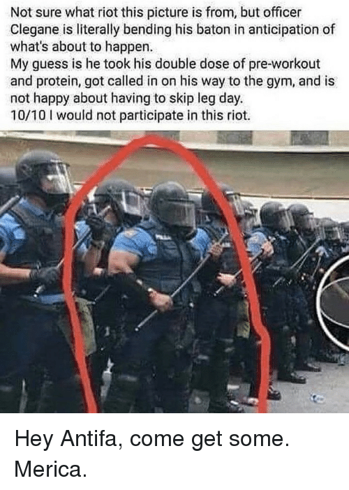 Gym, Memes, and Protein: Not sure what riot this picture is from, but officer  Clegane is literally bending his baton in anticipation of  what's about to happen.  My guess is he took his double dose of pre-workout  and protein, got called in on his way to the gym, and is  not happy about having to skip leg day.  10/10 I would not participate in this riot. Hey Antifa, come get some. Merica.