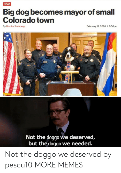 deserved: Not the doggo we deserved by pescu10 MORE MEMES