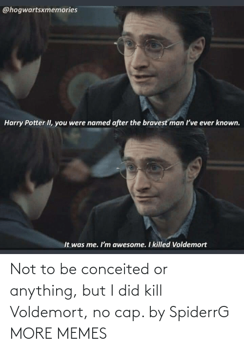 i did: Not to be conceited or anything, but I did kill Voldemort, no cap. by SpiderrG MORE MEMES