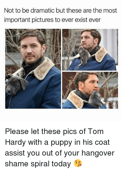 spirals: Not to be dramatic but these are the most  important pictures to ever exist ever Please let these pics of Tom Hardy with a puppy in his coat assist you out of your hangover shame spiral today 😘