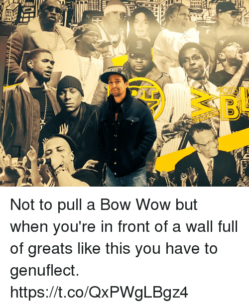 Memes, Wow, and Bow Wow: Not to pull a Bow Wow but when you're in front of a wall full of greats like this you have to genuflect. https://t.co/QxPWgLBgz4