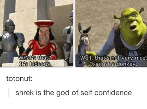 Shrekli: not  tvery nice.  KS hideous  IGSjust a donkey.  totonut:  shrek is the god of self confidence