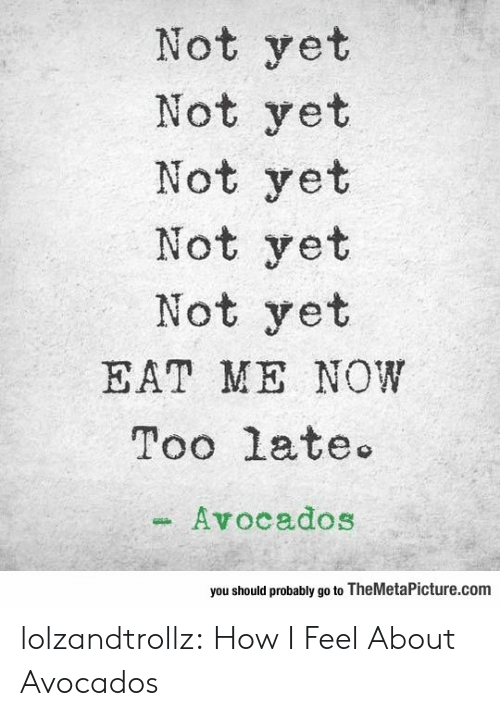 eat me: Not yet  Not yet  Not yet  Not yet  Not yet  EAT ME NOW  Too late  Avocados  you should probably go to TheMetaPicture.com lolzandtrollz:  How I Feel About Avocados