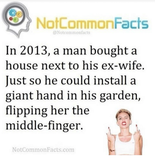 Memes, 🤖, and Commons: NotCommonFacts  @Notcommon facts  In 2013, a man bought a  house next to his ex-wife.  Just so he could install a  giant hand in his garden,  flipping her the  middle-finger.  Not Common Facts.com