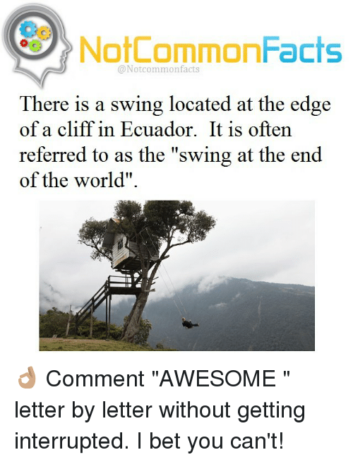 "Memes, Ecuador, and 🤖: NotCommonFacts  @Notcommon facts  There is a swing located at the edge  of a cliff in Ecuador. It is often  referred to as the ""swing at the end  of the world"". 👌🏽 Comment ""AWESOME "" letter by letter without getting interrupted. I bet you can't!"
