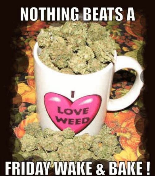 Image result for funny wake and bake friday