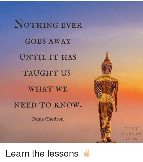 Memes, 🤖, and D&d: NOTHING EVER  GOES AWAY  UNTIL IT HAS  TAUGHT US  WHAT WE  NEED TO KNOW.  Pema Chodron  tiny  b u d d h a Learn the lessons ✌🏼