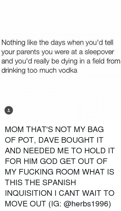 Drinking, Fucking, and God: Nothing like the days when you'd tell  your parents you were at a sleepover  and you'd really be dying in a field from  drinking too much vodka MOM THAT'S NOT MY BAG OF POT, DAVE BOUGHT IT AND NEEDED ME TO HOLD IT FOR HIM GOD GET OUT OF MY FUCKING ROOM WHAT IS THIS THE SPANISH INQUISITION I CANT WAIT TO MOVE OUT (IG: @herbs1996)