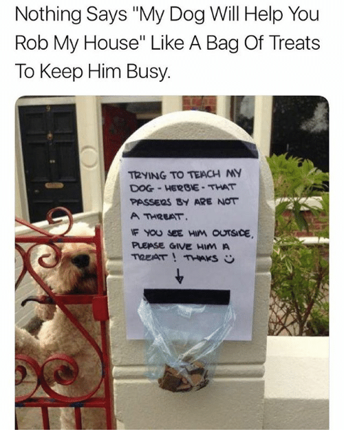 """Memes, My House, and Help: Nothing Says """"My Dog Will Help You  Rob My House"""" Like A Bag Of Treats  To Keep Him Busy  T2yING TO TEACH MY  DOG-HERGE THAT  PASSERS SY ARE NOT  A THREAT.  PLEASE GIVE HIM A"""