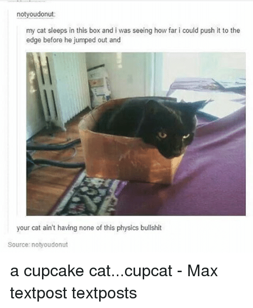 Memes, Physics, and Bullshit: notyoudonut:  my cat sleeps in this box and i was seeing how far i could push it to the  edge before he jumped out and  your cat ain't having none of this physics bullshit  Source: notyoudonut a cupcake cat...cupcat - Max textpost textposts