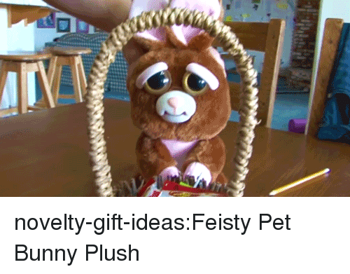 Tumblr, Blog, and Com: novelty-gift-ideas:Feisty Pet Bunny Plush