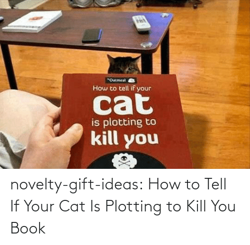 Kill You: novelty-gift-ideas:  How to Tell If Your Cat Is Plotting to Kill You Book