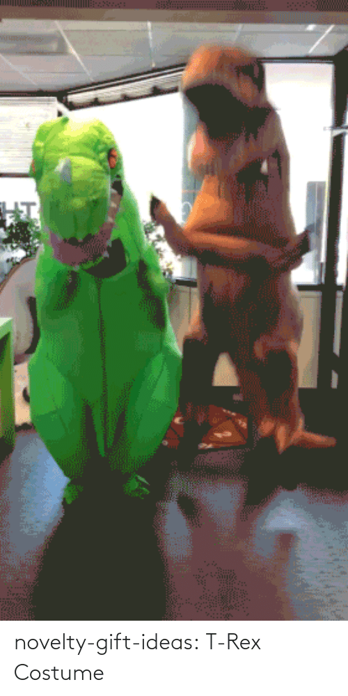 Rex: novelty-gift-ideas:  T-Rex Costume