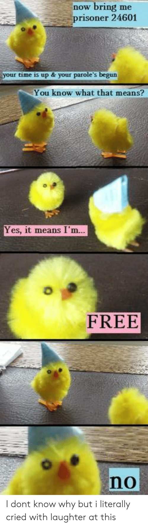 im free: now bring me  prisoner 24601  your time is up & your parole's begun  You know what that means?  Yes, it means I'm.  FREE  no I dont know why but i literally cried with laughter at this