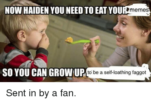 Memes, Faggot, and Faggots: Now HADENVOU IT YOUR memes  SO YOU CAN GROWN UP  to be a self-loathing faggot Sent in by a fan.