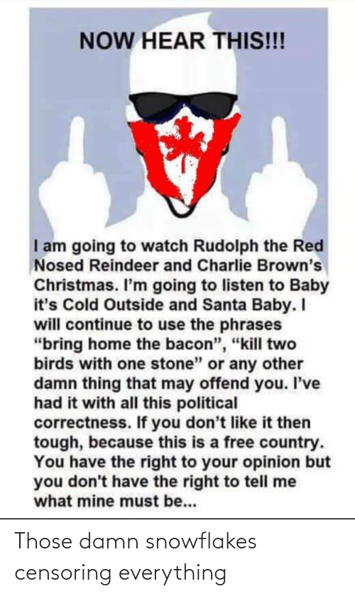 "Baby, It's Cold Outside: NOW HEAR THIS!!!  I am going to watch Rudolph the Red  Nosed Reindeer and Charlie Brown's  Christmas. I'm going to listen to Baby  it's Cold Outside and Santa Baby. I  will continue to use the phrases  ""bring home the bacon"", ""kill two  birds with one stone"" or any other  damn thing that may offend you. I've  had it with all this political  correctness. If you don't like it then  tough, because this is a free country.  You have the right to your opinion but  you don't have the right to tell me  what mine must be... Those damn snowflakes censoring everything"