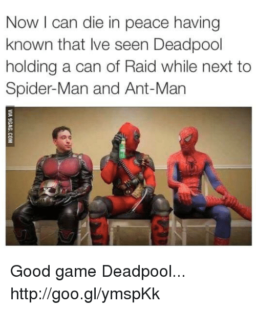 ant man: Now I can die in peace having  known that Ive seen Deadpool  holding a can of Raid while next to  Spider-Man and Ant-Man Good game Deadpool... http://goo.gl/ymspKk