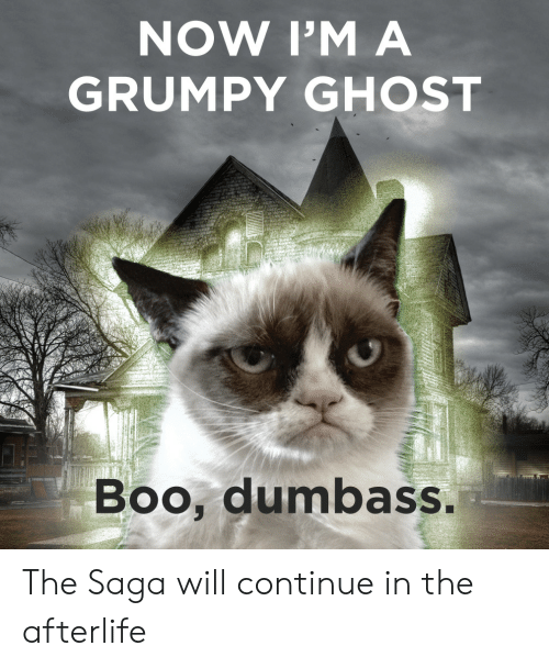 saga: NOW I'M A  GRUMPY GHOST  Boo, dumbass The Saga will continue in the afterlife