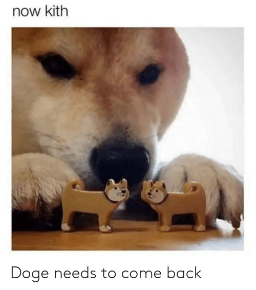 Doge: now kith Doge needs to come back