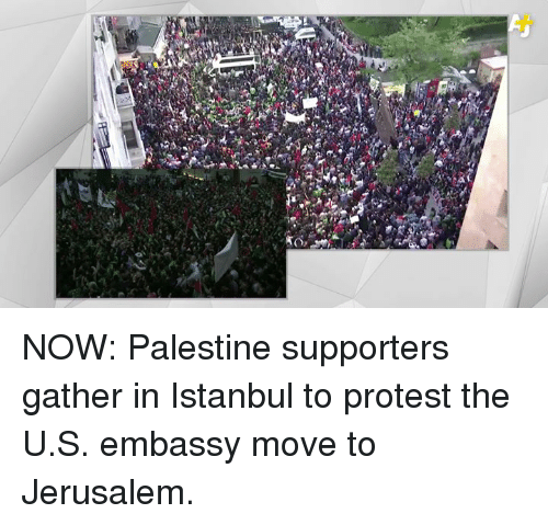 Memes, Protest, and Istanbul: NOW: Palestine supporters gather in Istanbul to protest the U.S. embassy move to Jerusalem.
