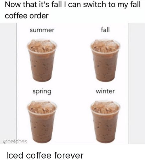 Its Fall: Now that it's fall I can switch to my fall  coffee order  summer  fall  spring  winter  abetches Iced coffee forever