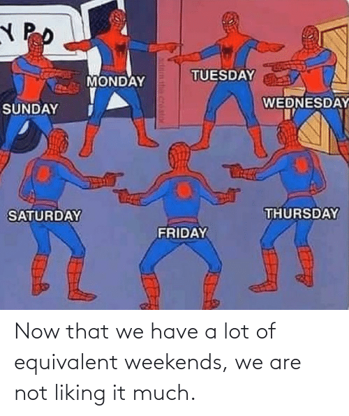 Weekends: Now that we have a lot of equivalent weekends, we are not liking it much.