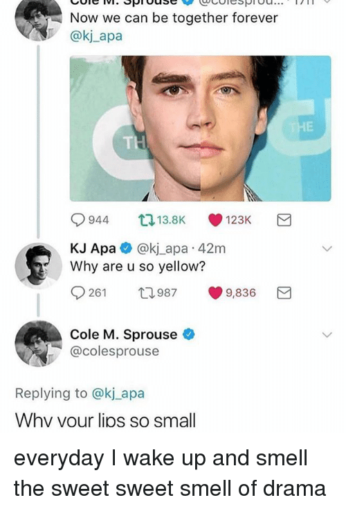Smell, Forever, and Girl Memes: Now we can be together forever  @kj_apa  9944 13.BK , 123K  KJ Apa @kj_apa 42m  Why are u so yellow?  0261 ロ987 9,836  Cole M. Sprouse  @colesprouse  Replying to @kj_apa  Whv vour lios so small everyday I wake up and smell the sweet sweet smell of drama