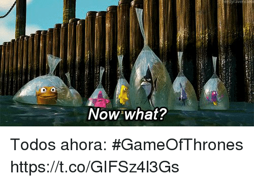 Espanol, International, and Gameofthrones: Now what? Todos ahora:  #GameOfThrones https://t.co/GIFSz4l3Gs