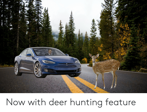 Deer Hunting: Now with deer hunting feature