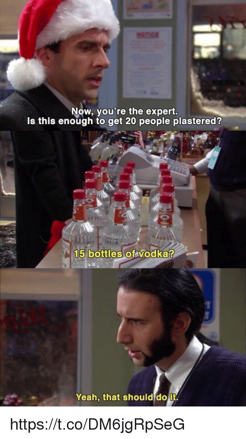 Yeah, Vodka, and Now: Now, you're the expert.  Is this enough to get 20 people plastered?  15 bottles of vodka?  Yeah, that should do it. https://t.co/DM6jgRpSeG