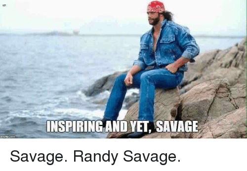 np-inspiring-and-yet-savage-savage-randy