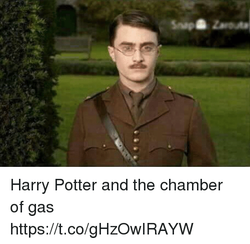 Harry Potter, Memes, and 🤖: npZarouta Harry Potter and the chamber of gas https://t.co/gHzOwIRAYW