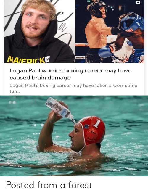 Boxing: nth  UPLOAD  MATERICAK  Logan Paul worries boxing  caused brain damage  career may have  Logan Paul's boxing career may have taken a worrisome  turn. Posted from a forest