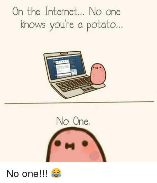 Memes, Potato, and 🤖: nthe Interne  t... NO One  knows you're a potato  nows voure a potato...  nows youre a potato  No One.  0 No one!!! 😂