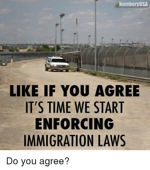 Enforcer: NumbersUSA  LIKE IF YOU AGREE  IT'S TIME WE START  ENFORCING  IMMIGRATION LAWS Do you agree?