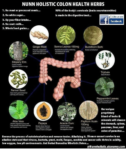 Natural Remedies For Colon Spasms