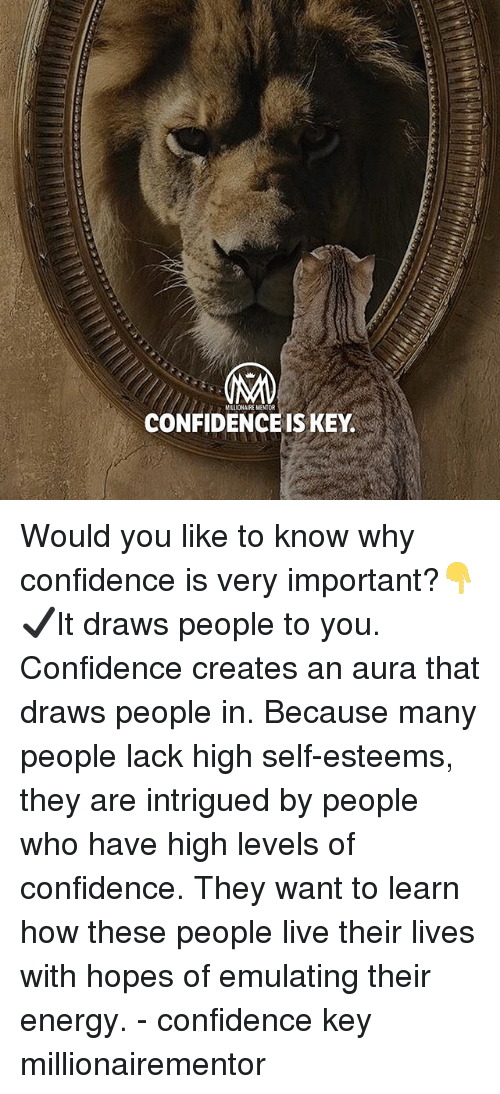 Confidence, Energy, and Memes: NUONAIRE MENTOR  CONFIDENCE IS KEY. Would you like to know why confidence is very important?👇 ✔️It draws people to you. Confidence creates an aura that draws people in. Because many people lack high self-esteems, they are intrigued by people who have high levels of confidence. They want to learn how these people live their lives with hopes of emulating their energy. - confidence key millionairementor