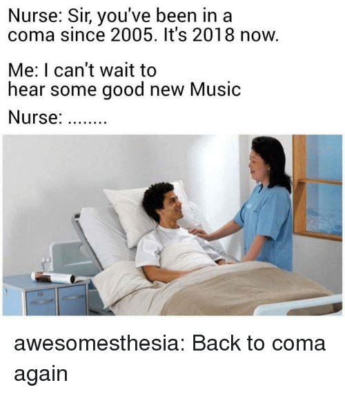 Music, Tumblr, and Blog: Nurse: Sir, you've been in a  coma since 2005. It's 2018 now.  Me: I can't wait to  hear some good new Music  Nurse: awesomesthesia:  Back to coma again
