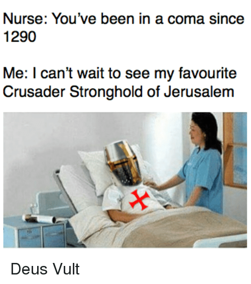 stronghold: Nurse: You've been in a coma since  1290  Me: I can't wait to see my favourite  Crusader Stronghold of Jerusalem <p>Deus Vult</p>