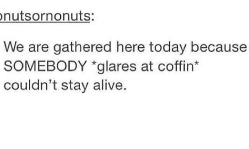 staying alive: nutsornonuts:  We are gathered here today because  SOMEBODY *glares at coffin  couldn't stay alive.
