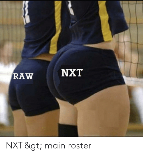 nxt: NXT  RAW NXT > main roster