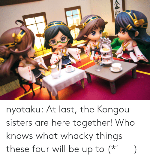 Whacky: nyotaku nyotaku:  At last, the Kongou sisters are here together! Who knows what whacky things these four will be up to (*´・v・)