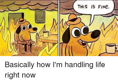 Girl Memes: o C  THIS IS FINe. Basically how I'm handling life right now